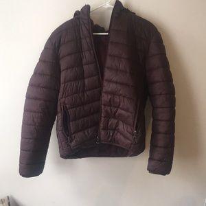Winter Maroon Jacket